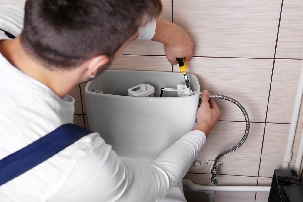 wc spülung kasten
